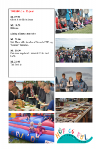 Strandfest2016_3